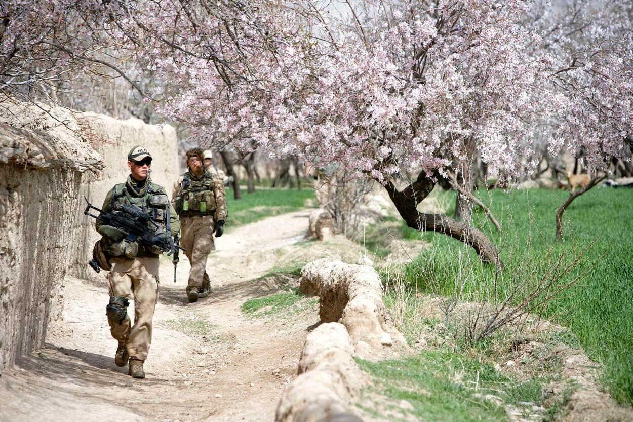 'Zonder tolken waren er meer Nederlandse slachtoffers gevallen in Afghanistan'